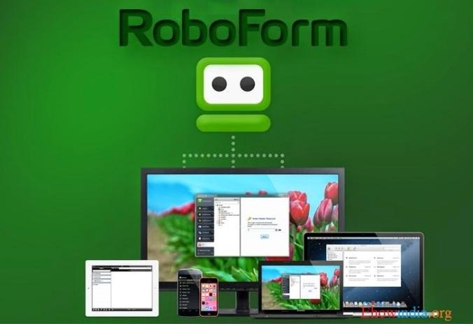 2-roboform-flaws